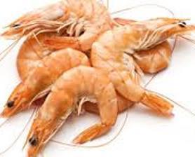 Los 5 mariscos más consumidos